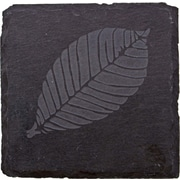 Thirstystone Etched Leaf Slate Coaster (Set of 4)