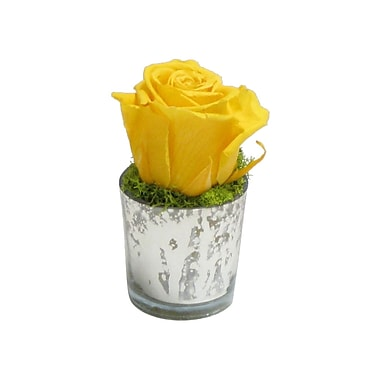 Bougainvillea Faux Reindeer Moss and Rose in Mercury Glass Votive; Yellow