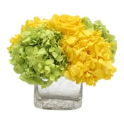 Bougainvillea Cracked Glass Cube; Roses Yellow and Hydrangea Basil & Yellow