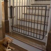 Cardinal Gates Metal D cor Gate; Bronze