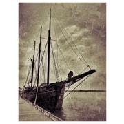 PrestigeArtStudios Pirates Photographic Print