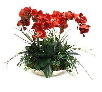 Dimond Home Eissee Decorative Bowl Shoppingmule Com