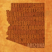 PrestigeArtStudios Arizona Textual Art