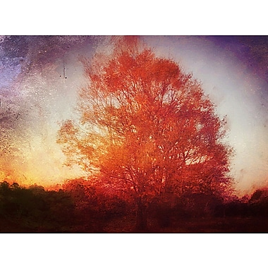 PrestigeArtStudios The Tree of Life Photographic Print