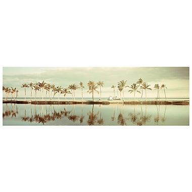 PrestigeArtStudios The Pace of Paradise Photographic Print
