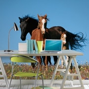 Brewster Home Fashions National Geographic Wild Horses Wall Decal
