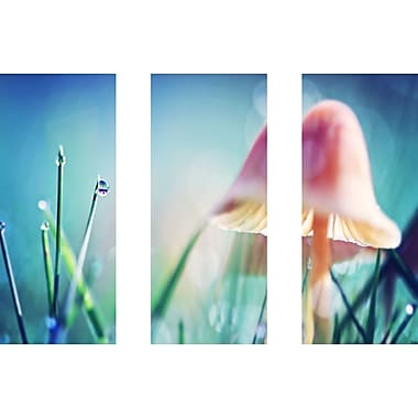Marmont HIll 'Morning Light Mushroom Triptych' Painting Print on Wrapped Canvas; 30'' H x 45'' W