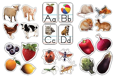 Carson-Dellosa Photographic Shape Sticker Set Multi-Color(162029)