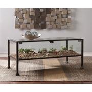 Wildon Home   Terrarium Coffee Table