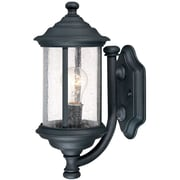 Dolan Designs Walnut Grove 1-Light Outdoor Wall lantern; Black