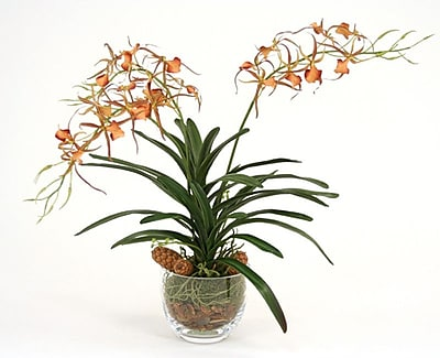 Distinctive Designs Silk Spider Orchid in Glass Bowl WYF078275924894