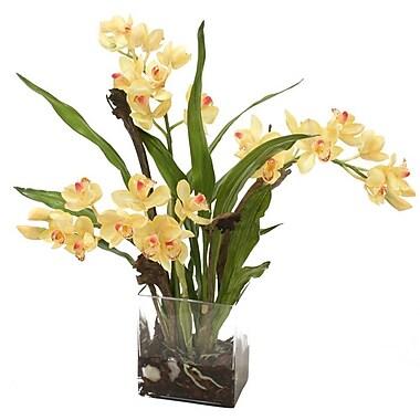 Distinctive Designs Waterlook Silk Orchid Plant in Rectangular Vase