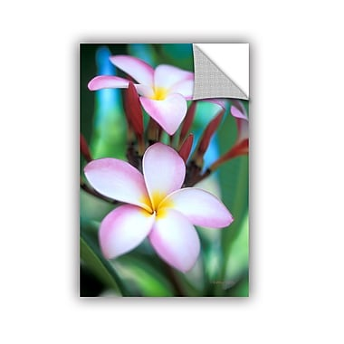 ArtWall ArtApeelz Maui Plumeria by Kathy Yates Photographic Print Removable Wall Decal