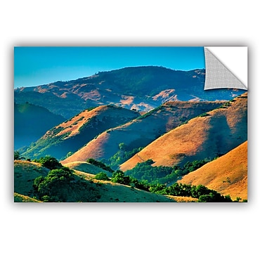 ArtWall ArtApeelz Golden Hills by Steve Ainsworth Photographic Print on Canvas