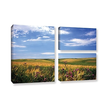 ArtWall Field of Dreams by Kathy Yates 3 Piece Photographic Print on Gallery Wrapped Canvas Set