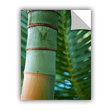 ArtWall ArtApeelz Bamboo And Fern by Kathy Yates Photographic Print; 18'' H x 14'' W x 0.1'' D