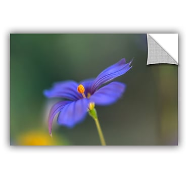 ArtWall ArtApeelz Wildflower Dance by Kathy Yates Photographic Print Removable Wall Decal