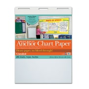"""Pacon® Heavy Duty Anchor Chart Paper, 24"""" x 32"""", White, Unruled, 25 sheets/pad (PAC3371)"""