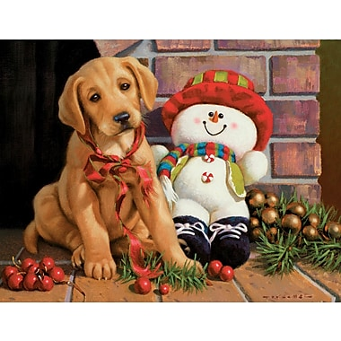 Lang New Found Friends Boxed Christmas Cards, 1 Design, 18 Cards/Box