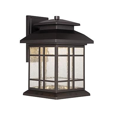 Designers Fountain Piedmont 1-Light Outdoor Wall Lantern