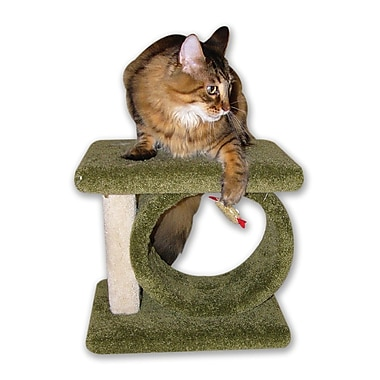 BeatrisePetProducts 12'' Kitty Carnival Cat Condo