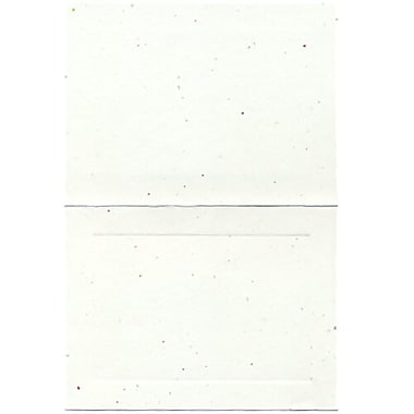 JAM Paper® Blank Foldover Cards, A6 size, 4.63 x 6.25, Fiesta Panel, 500/Pack (309924B)