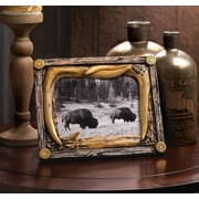 Zingz & Thingz Wild Country Picture Frame