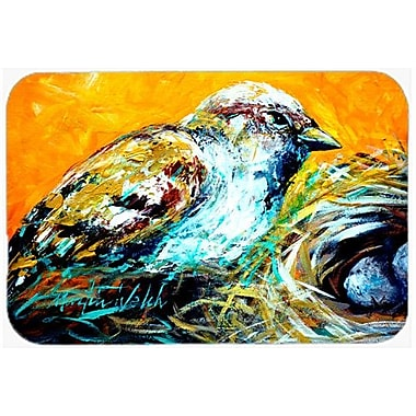 Caroline's Treasures Look At The Birdie Kitchen/Bath Mat; 20'' H x 30'' W x 0.25'' D