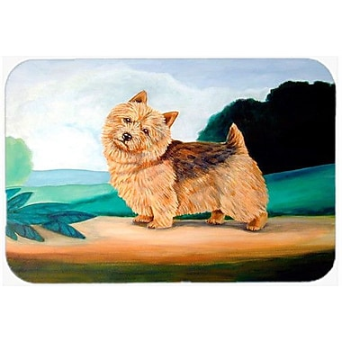 Caroline's Treasures Norwich Terrier Kitchen/Bath Mat; 24'' H x 36'' W x 0.25'' D