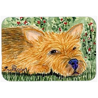 Caroline's Treasures Norwich Terrier Kitchen/Bath Mat; 24'' H x 36'' W x 0.25'' D
