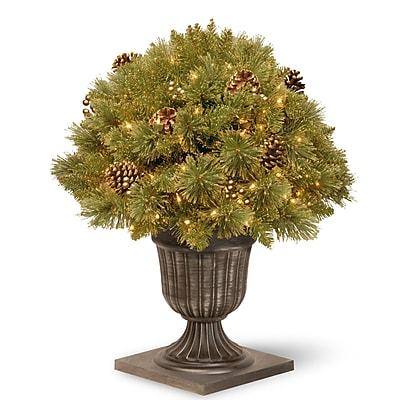 National Tree Co. Cedar Plant In Urn