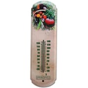 Taylor Precision Products 2784015 Thermometer Tomato 17 In.