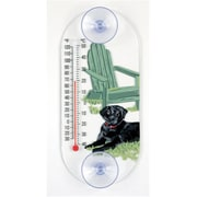 Aspects ASPECTS300 Black Lab Thermometer