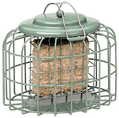 Gardman Suet Cake Oval Suet Bird Feeder (WYF078277907447) photo