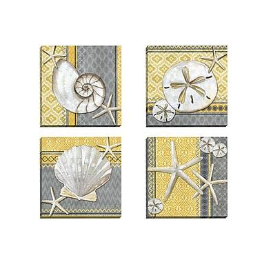 Portfolio Canvas Santa Cruz Shells I by Paul Brent 4 Piece Graphic Art on Wrapped Canvas Set