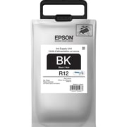 Epson R12 Black Ink Pack (TR12120)