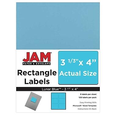 JAM Paper® Mailing Address Labels, 3 1/3 x 4, Blue, 120/pack (302725770)