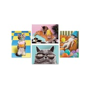 "Portal Fun Cat Photography Cards, Birthday, 5"" x 7"", 4/Pack (93157)"
