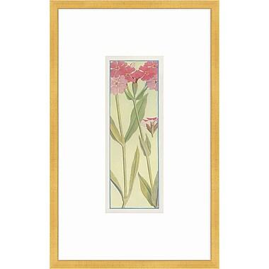 Melissa Van Hise Alpine Flora III Framed Graphic Art