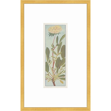 Melissa Van Hise Alpine Flora V Framed Graphic Art