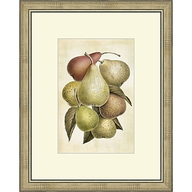 Melissa Van Hise Lovely Fruit I Framed Graphic Artt