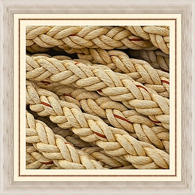 Melissa Van Hise Red on the Ropes II Framed Photographic Print
