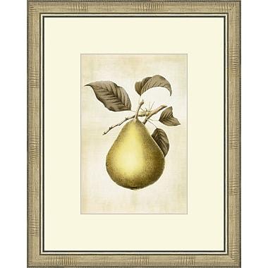Melissa Van Hise Lovely Fruit II Framed Graphic Art