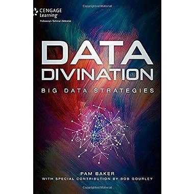 Data Divination: Big Data Strategies (9781305115088)