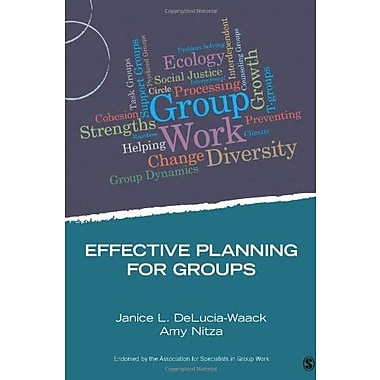 Effective Planning for Groups Used Book (9781483332307)