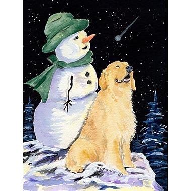 Caroline's Treasures Golden Retriever w/ Snowman in Green Hat 2-Sided Garden Flag