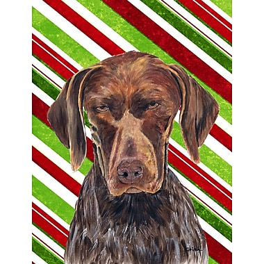 Caroline's Treasures German Shorthaired Pointer Candy Cane Holiday Christmas 2-Sided Garden Flag