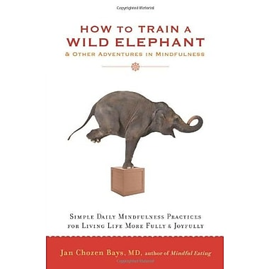 How to Train a Wild Elephant: And Other Adventures in Mindfulness, Used Book (9781590308172)