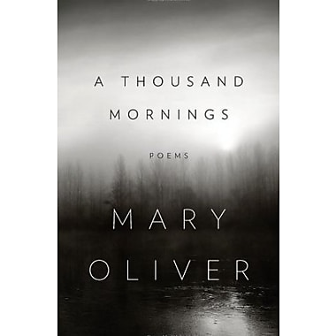 A Thousand Mornings, Used Book (9781594204777)
