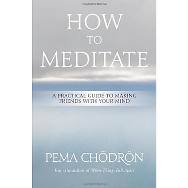 How to Meditate: A Practical Guide to Making Friends with Your Mind, New Book (9781604079333)